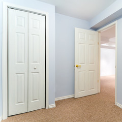 Empty basement room with closet and carpet