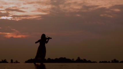 Silhouette of a Young Female Violin Player at Sunset