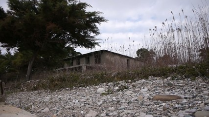 Abandoned Building in Bush at Sea Shoreline