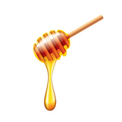 Honey stick with flowing honey isolated vector