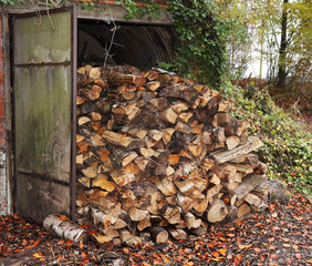 A Pile of Logs in a woodland shed