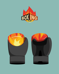 Boxing gloves  fire