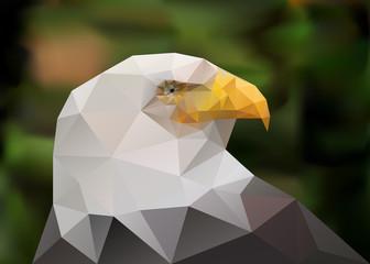Geometric polygonal triangle bald eagle. low poly illustration