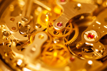 Complex watch movement macro