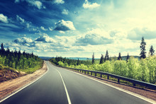 "Постер, картина, фотообои ""road in north forest"""