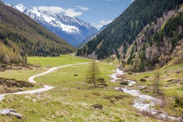 Gebirgsbach in Südtirol