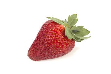 One strawberry on white
