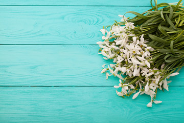 Flowers on blue wooden background