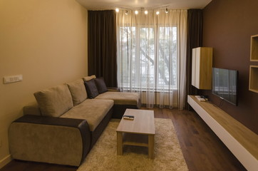 Living room with modern LED lighting