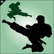 Karate. Taekwon-do. Kung-fu. High kick. MARTIAL ARTS. - 80665687