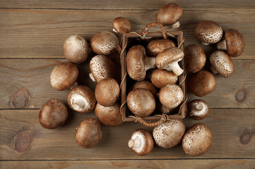 Brown cap mushrooms in basket