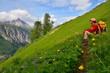 Rast bei Wanderung im Gebirge
