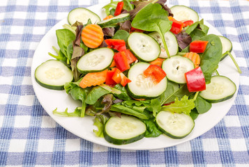 Fresh Salad with Cucumber and Red Bell Pepper
