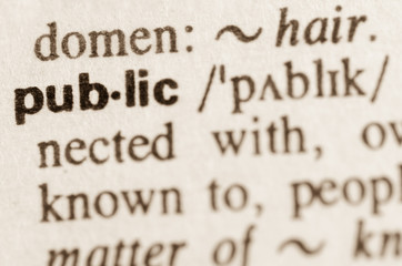 Dictionary definition of word public