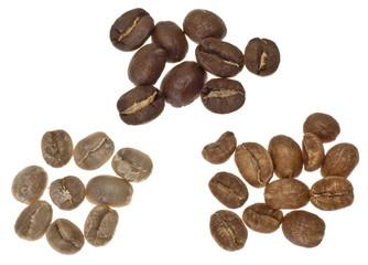 Kaffeebohnen mit verschiedenen Röststufen