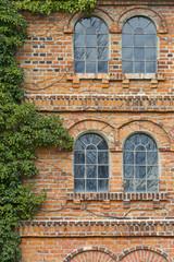 Alte Klinker-Hausfassade mit Bewuchs