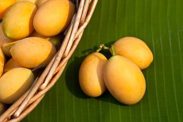 sweet Marian plum thai fruit (Mayongchid Maprang Marian Plum and
