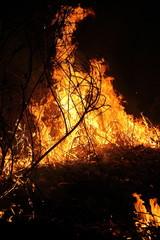 Burning dried grass at night