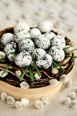 Chocolate quail eggs into the nest ad pussy willow