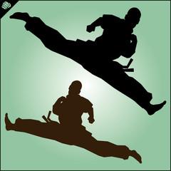 Karate. Taekwon-do. Kung-fu. High kick. MARTIAL ARTS.