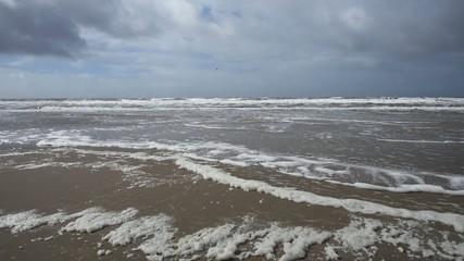 Dutch coast