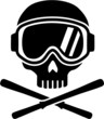 Skull with Ski Goggles and Skis - 80686083