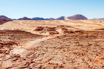 desert. Sinai,  Egypt.