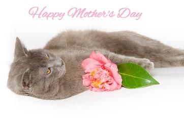 Cartolina per la festa della mamma