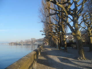 science of Bodensee with blue sky and blue water in switzerland