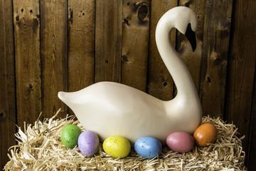 Easter Swan