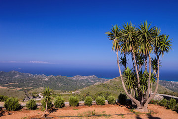 view of the bay, in the foreground  yucca, Rhodes, Greece