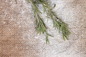 Culinary background with dry rosemary herb and flour
