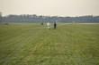 Glider on an airfield near the German-Dutch border - 80694446