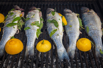grilled organic fish