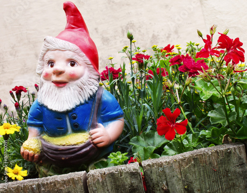 Garden Gnome - 80700091