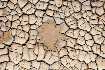 Ground cracked by the drought