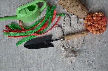 Spring gardening: trowel, gloves, peat pot and watering
