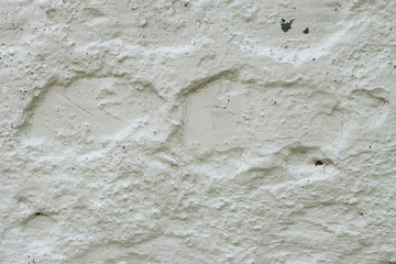 Concrete wall painted with lime