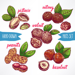 set with colorful nuts
