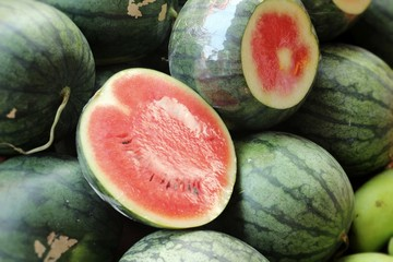 fresh watermelon at the market