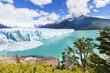 Glacier in Argentina - 80710675