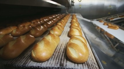 Bread on a conveyor