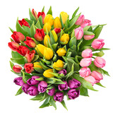 Bouquet of fresh spring tulip flowers isolated on white backgrou