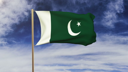 Pakistan flag waving in the wind. Green screen, alpha matte