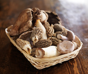 basket of exotic gourmet mushrooms