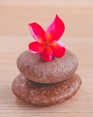Stones with frangipani flower. -  Concept for spa and meditatio