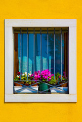 window with colorful flowers, Italy