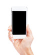 Hand holding White Smartphone with blank screen on white backgro - 80720815