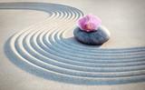 Orchidee auf Stein im Sand 2
