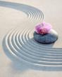 Leinwanddruck Bild - Orchidee auf Stein im Sand 1
